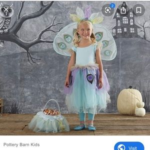 Pottery barn kids peacock costume